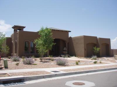 Single Family Home For Sale: 9700 Sand Verbena Trail NE