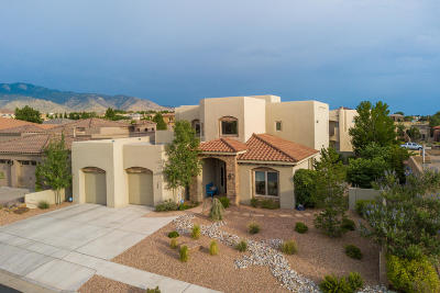 Single Family Home For Sale: 9800 Datura Trail NE