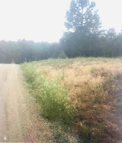 Bernalillo County Residential Lots & Land For Sale: 43 Camino Circular