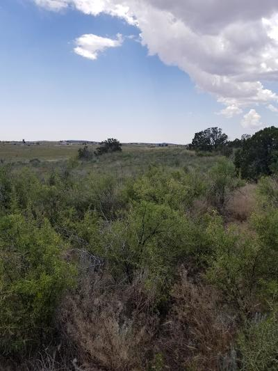Torrance County Residential Lots & Land For Sale: 57 Luke Road