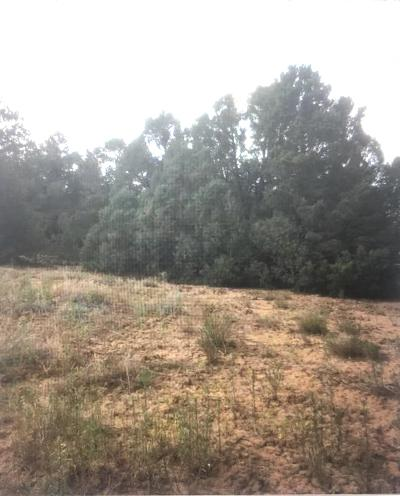 Bernalillo County Residential Lots & Land For Sale: 47 Camino Circular
