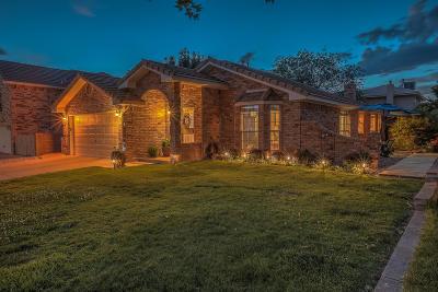 Bernalillo County Single Family Home For Sale: 7809 Eagle Rock Avenue NE