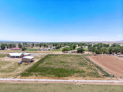 Valencia County Residential Lots & Land For Sale: Tr D Quarter Horse Lane