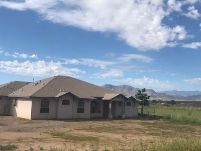 Socorro County Single Family Home For Sale: 197 Slayton Road