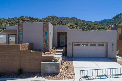 High Desert Single Family Home For Sale: 5104 Piedra Alta Lane NE