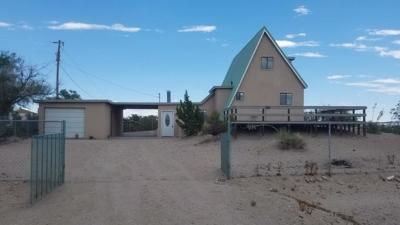 Sierra County Single Family Home For Sale: 1107 Skyline Drive