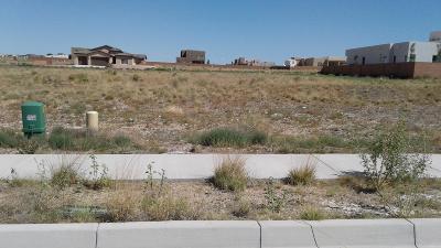 Albuquerque Residential Lots & Land For Sale: 6523 Vista Del Prado Road NW