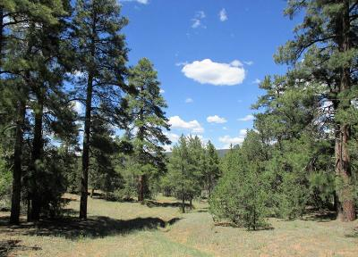 Cibola County Residential Lots & Land For Sale: Lot 22 Monte Vista Lane
