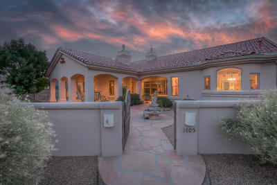 Los Lunas Single Family Home For Sale: 1405 Valley View Drive SW