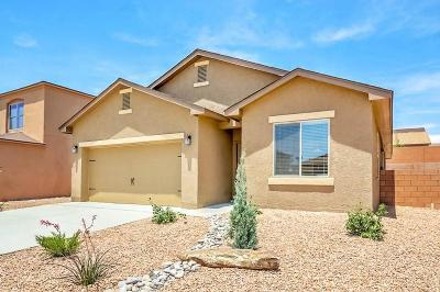 Albuquerque Single Family Home For Sale: 3035 Rio Maule Drive SW