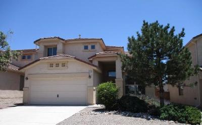 Rio Rancho Single Family Home For Sale: 1313 Danzante Drive SE