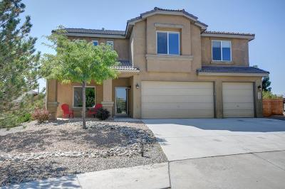 Rio Rancho Single Family Home For Sale: 2533 Camino Catalonia SE