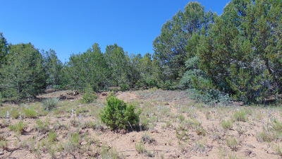Edgewood Residential Lots & Land For Sale: 4 Belle Starr Road