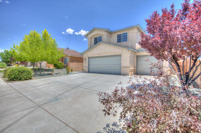 Rio Rancho Single Family Home For Sale: 3846 Desert Pinon Drive NE