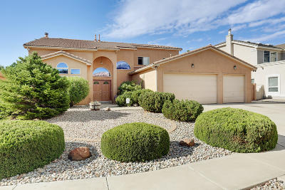 Rio Rancho Single Family Home For Sale: 3880 Bayhill Loop SE