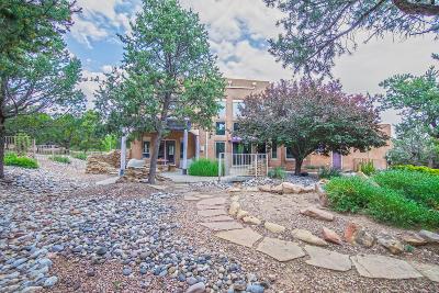Tijeras, Cedar Crest, Sandia Park, Edgewood, Moriarty, Stanley Single Family Home For Sale: 51 Sandia Mountain Ranch Drive
