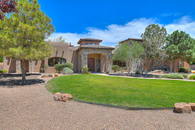Albuquerque Single Family Home For Sale: 9304 Black Farm Lane NW