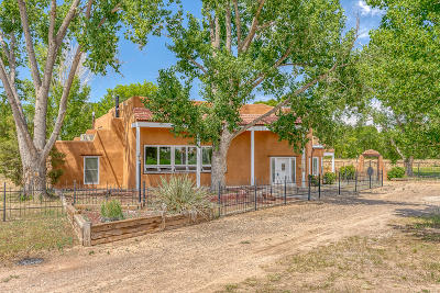 Valencia County Single Family Home For Sale: 1010 Casa Del Sol Lane