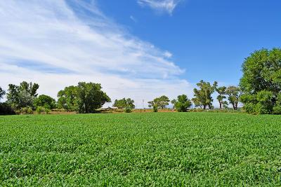 Socorro County Residential Lots & Land For Sale: 0 Las Nutrias
