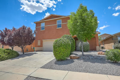 Rio Rancho Single Family Home For Sale: 1613 Terra Del Sol Drive