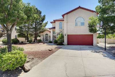 Rio Rancho Single Family Home For Sale: 3010 Ashkirk Place SE