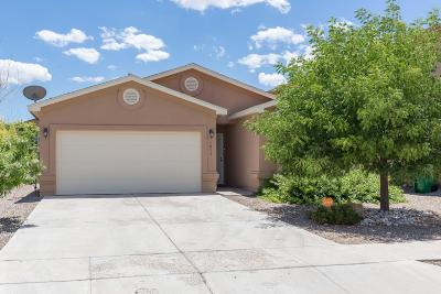 Rio Rancho Single Family Home For Sale: 1018 Desert Sunflower Drive NE