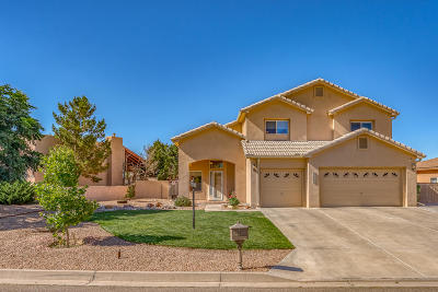 Rio Rancho Single Family Home For Sale: 3509 Newcastle Drive SE