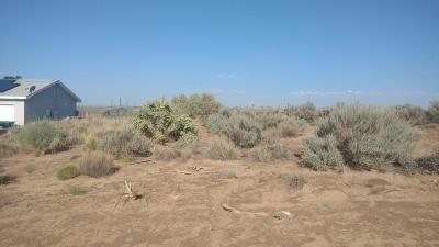 Rio Rancho Residential Lots & Land For Sale: 201 1st Street NE