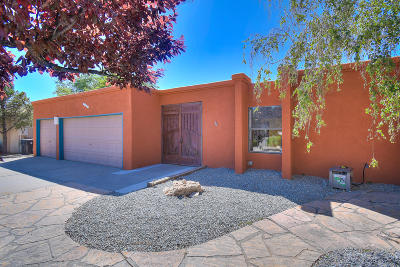 Albuquerque Single Family Home For Sale: 4019 Calle Pino NE
