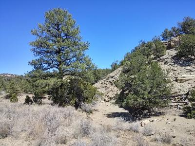 Catron County Residential Lots & Land For Sale: Ph1 Lot 50 Wild Horse Ranch