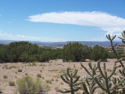 Placitas Residential Lots & Land For Sale: Palomar Road - Lot 22