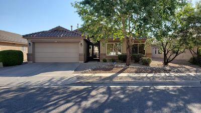 Bernalillo County Single Family Home For Sale: 4515 Los Valles Road NW