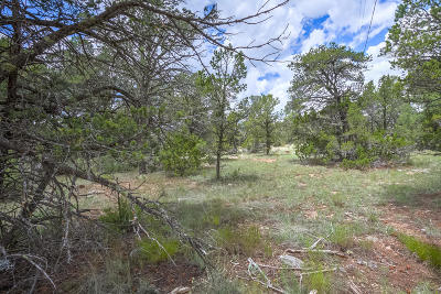 Bernalillo County Residential Lots & Land For Sale: 41 Martinez Road