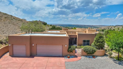 Placitas Single Family Home For Sale: 34 Santa Ana Loop