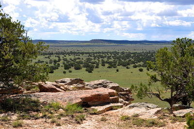 Cibola County Residential Lots & Land For Sale: Tract B1 Bia 125