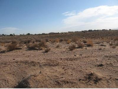 Rio Rancho Residential Lots & Land For Sale: 1412 Don Place SE