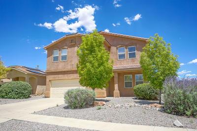 Rio Rancho Single Family Home For Sale: 1644 Terra De Sol Drive SE