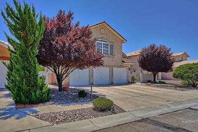 Albuquerque Single Family Home For Sale: 7101 Calle Montana NE