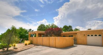 Albuquerque Single Family Home For Sale: 4419 Joe Dan Place NE