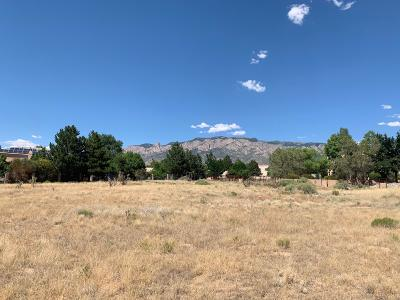 Bernalillo County Residential Lots & Land For Sale: San Antonio Drive NE
