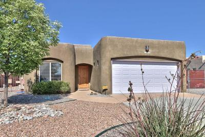 Rio Rancho Single Family Home For Sale: 1397 Tiffany Lane SE