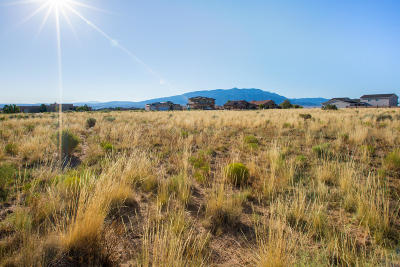 Rio Rancho Residential Lots & Land For Sale: 3317 Palmyra Court NE