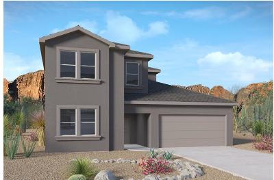 Rio Rancho Single Family Home For Sale: 4524 Skyline Loop NE