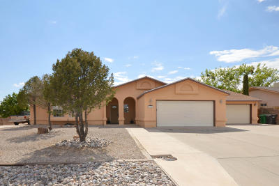 Rio Rancho Single Family Home For Sale: 2028 Clearwater Loop NE