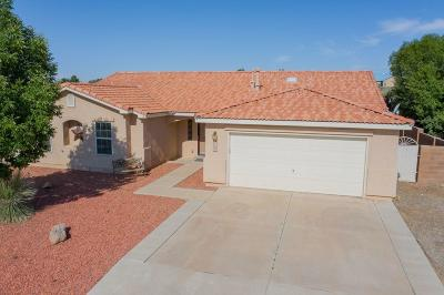 Rio Rancho Single Family Home For Sale: 709 9th Street NE