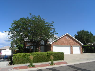 Bernalillo County Single Family Home For Sale: 9504 Cody Street NW