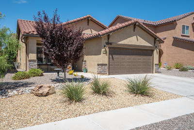Bernalillo County Single Family Home For Sale: 9627 Iron Rock Drive NW