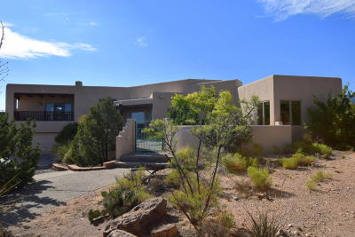 Sandoval County Single Family Home For Sale: 22 Tierra Madre Court