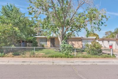 Albuquerque Single Family Home For Sale: 1129 Luthy Circle NE