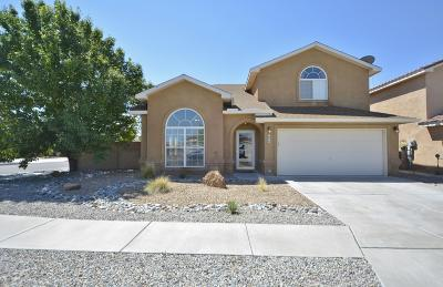 Albuquerque Single Family Home For Sale: 6800 Deerbourne Road NW